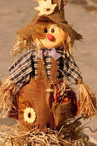 430210_toy_scarecrow_2.jpg