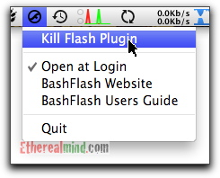 bash-flash-4.jpg