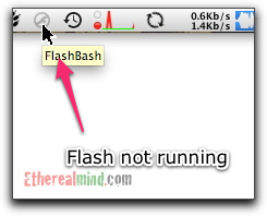 bash-flash-5.jpg