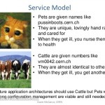 "Service Models – ""Pets and Cattle"""