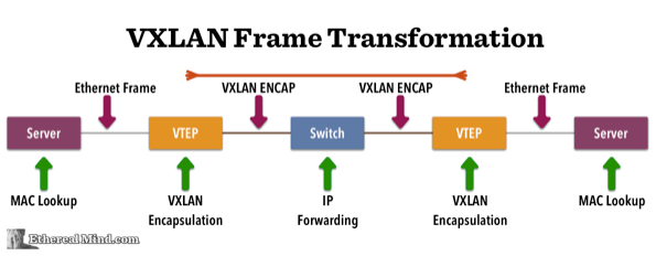 VXLAN-Frame-Transformation-595-opt.png