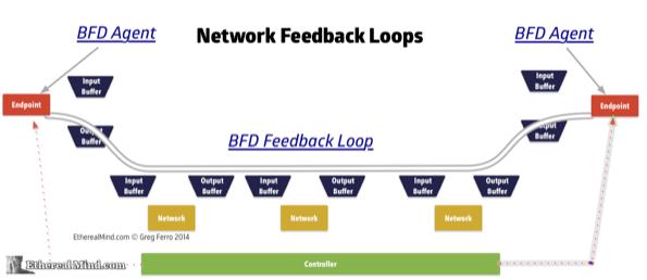Network feedback loops 2