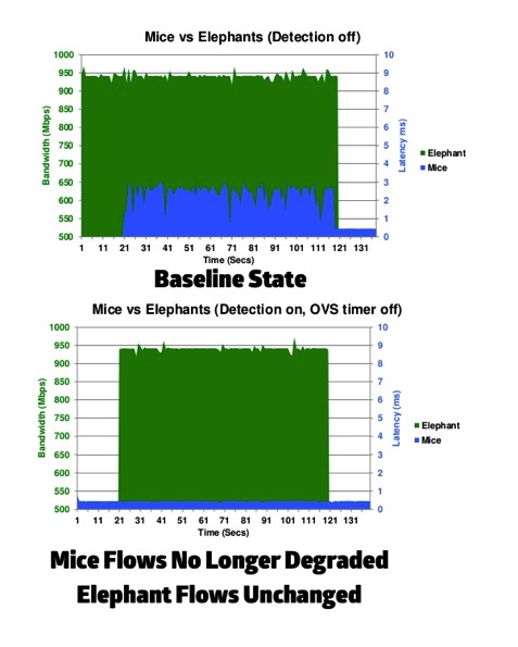 Elephant flow detection software hardware