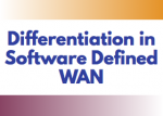 Differentiation in Software Defined WAN